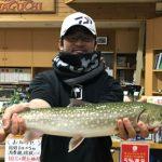 渡辺義也さんのアメマス60cm