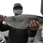 野村さんが釣った3.81kgのサクラマス
