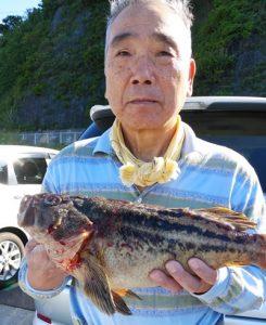 札幌市の清水さんが釣った50cmのシマゾイ