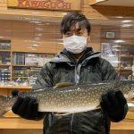 篠原さんが時化の中で釣ったアメマス63.5cm,2.5kg