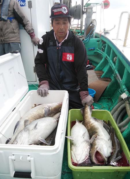 別海町の佐藤さん、良型ばかり15本